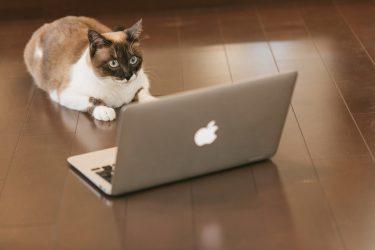 読まれるブログ文章の書き方|いきなり記事を書くのは危険です